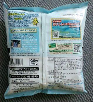 tanabata potech06.JPG