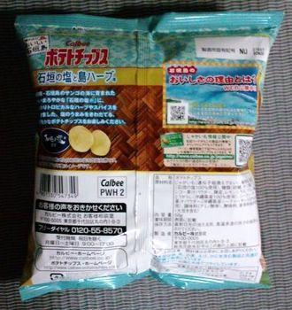 tanabata potech10.JPG